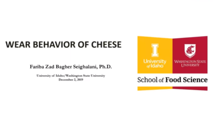 Wear behavior of cheese